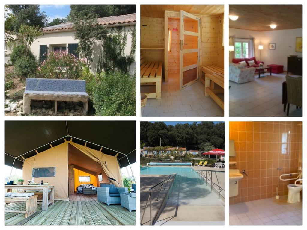 collage van foto's van het park